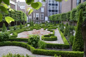 hidden patios like the ones you will see during a city walk in amsterdam